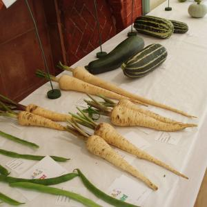 15. Parsnips etc.
