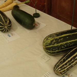 16. Marrows